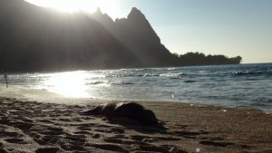 Sunset behind mountains on the beach